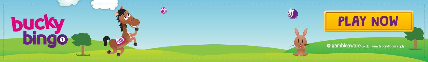 Bucky Bingo desktop banner